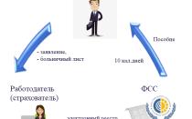 Пилотный проект ФСС какие документы сдавать