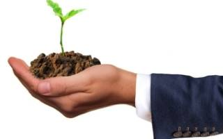 Переоформление земельного участка из аренды в собственность