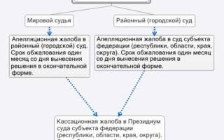 Как обжаловать апелляционное определение районного суда