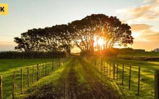 Как правильно продать земельный участок самостоятельно