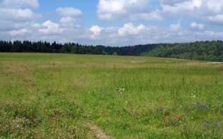 Бесплатно сведения о земельном участке предоставляются