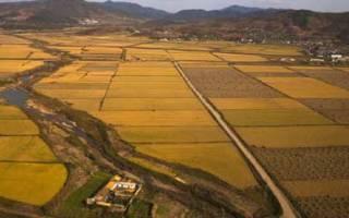 Группы земельных участков для расчета кадастровой стоимости
