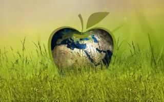 Экологический налог плата за загрязнение окружающей среды