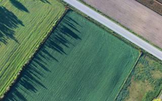 Общедолевая собственность на земельный участок сельхозназначения