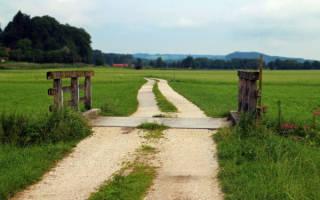 Как получить землю сельхозназначения бесплатно