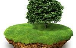 Как узаконить земельный участок без документов