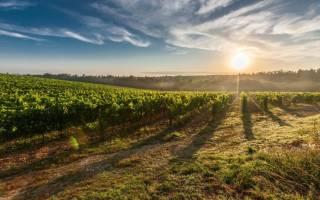 Пожизненное владение земельным участком оформление в собственность