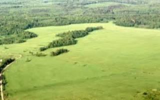 Коллективно долевая собственность на землю