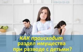 Доля детей при разводе и разделе имущества