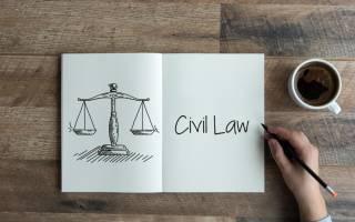 Права истца в гражданском процессе ГПК