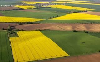 Что необходимо знать при покупке земельного участка