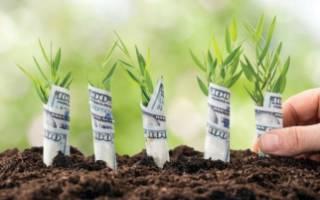 Рыночная стоимость земельного участка устанавливается органами