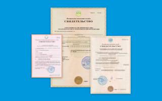 Сайт налоговой службы РФ получить ИНН