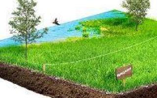 Где регистрируют право собственности на земельный участок