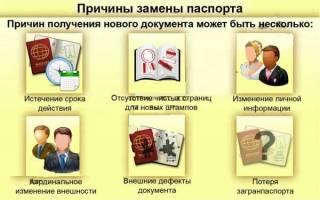 Поменяла паспорт какие документы менять