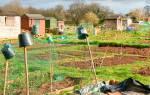Как оформить прилегающий земельный участок в собственность