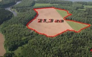 Как разделить земельный участок между собственниками