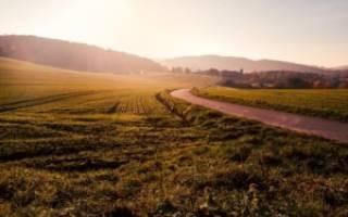 Переход права аренды земельного участка по наследству