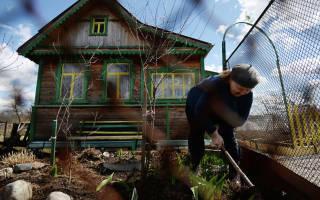 Регистрация загородного дома по дачной амнистии