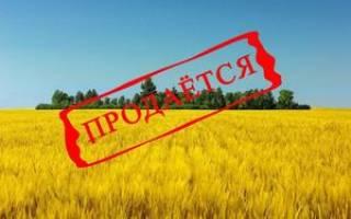 Как продать земельный участок сельхозназначения самостоятельно