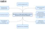 Какие документы являются удостоверением личности в РФ