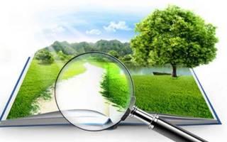 Как определяется кадастровая стоимость земли