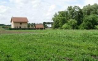 Можно ли продать земельный пай сельхозназначения